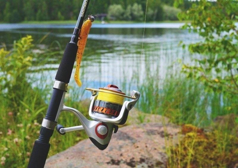 vissen op forel molen